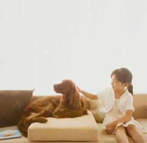 ソファに座る犬と女の子の写真素材 [FYI04038031]