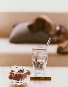 チェリーと冷たい飲み物の写真素材 [FYI04038033]