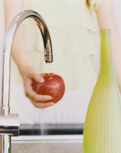 リンゴを洗う女性の手の写真素材 [FYI04038038]