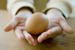卵を手のひらにのせた女の子の手の写真素材 [FYI04039237]