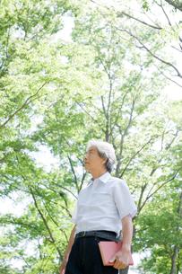 本を持ち木々の中で佇む男性の写真素材 [FYI04039571]