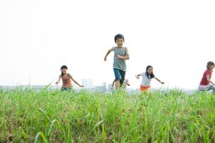 坂の草むらを上る2人の男の子と3人の女の子の写真素材 [FYI04039847]