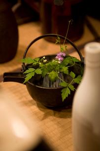 草花と和の小物の写真素材 [FYI04039983]