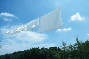 青空の下干される洗濯物イメージの写真素材 [FYI04040008]