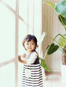 窓枠につかまって立つ幼児の写真素材 [FYI04040149]