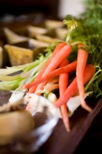 にんじんと春菊の生野菜サラダの写真素材 [FYI04040675]