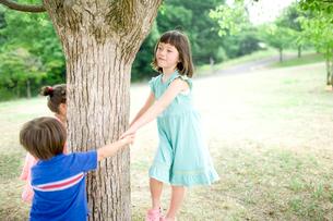 木の周りで遊ぶ子供達の写真素材 [FYI04040845]