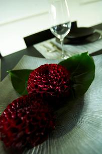 花のあるテーブルセッティングの写真素材 [FYI04040995]