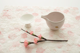 酒器と桜の写真素材 [FYI04041127]
