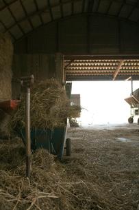 敷き藁とピッチフォークと手押し車の写真素材 [FYI04041154]