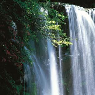 唐沢の滝の写真素材 [FYI04041253]