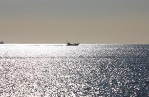 光る海を行く漁船 幕張沖 冬の海の輝きの写真素材 [FYI04043655]