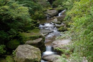 苔の橋の谷 花崗岩特有の直線的に割れて丸く風化したブロック風の写真素材 [FYI04047096]