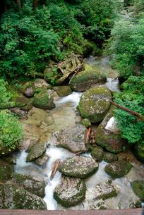 林泉橋の谷 花崗岩の転石や流木、砂礫の堆積も見られる代表的なの写真素材 [FYI04047102]