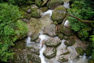 林泉橋の谷 花崗岩の転石や流木、砂礫の堆積も見られる代表的なの写真素材 [FYI04047104]