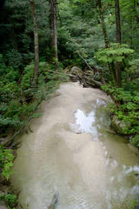 林泉橋の谷 花崗岩の転石や流木、砂礫の堆積も見られる代表的なの写真素材 [FYI04047105]