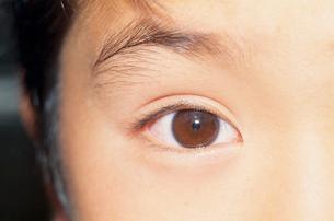人の目:明るい時の写真素材 [FYI04047597]