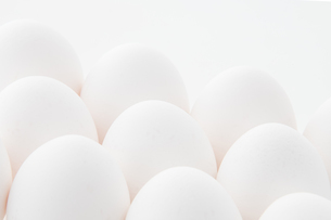 Chicken eggs on white background. Fresh chicken egg image.の写真素材 [FYI04047601]