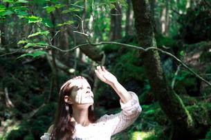 森の中の女性の写真素材 [FYI04047970]
