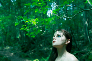 森の中の女性の写真素材 [FYI04047975]