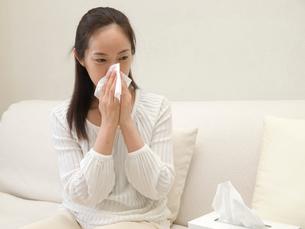 鼻をかむ女性の写真素材 [FYI04048238]
