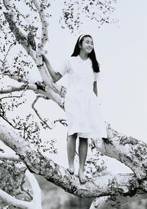 木登りをしている日本人の女の子の写真素材 [FYI04048388]