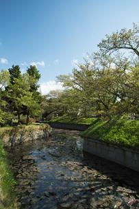 新緑の龍岡城五稜郭堀の写真素材 [FYI04049572]