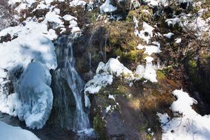 女の神氷水の湧水の写真素材 [FYI04049678]