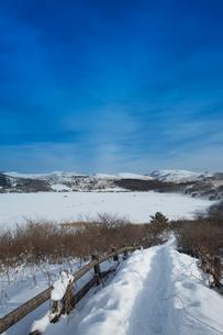 冬の八島ヶ原湿原の写真素材 [FYI04049689]