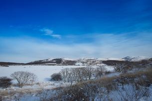 冬の八島ヶ原湿原の写真素材 [FYI04049690]