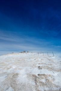 牛伏山山頂を望むの写真素材 [FYI04049694]