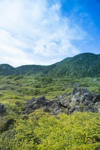 北八ヶ岳坪庭自然園の写真素材 [FYI04049762]