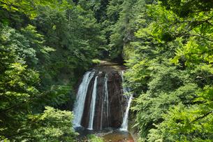 夏の王滝の写真素材 [FYI04049769]