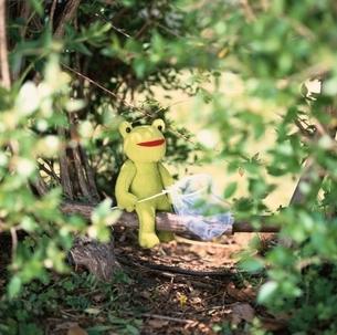 森虫取り網を持ったぬいぐるみのカエル フォトイラストの写真素材 [FYI04049880]