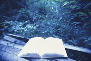 森と開いた1冊の本 三原市 広島県 8月の写真素材 [FYI04049902]