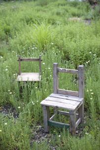 草原に椅子二脚の写真素材 [FYI04049934]