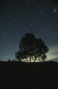星空と木のシルエット  芸北町 広島県の写真素材 [FYI04049936]
