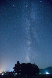 森と天の川の写真素材 [FYI04049965]