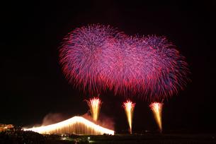 常総きぬ川花火大会 ナイアガラ富士とワイドスターマインの写真素材 [FYI04050103]