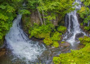 緑の中の竜頭ノ滝の写真素材 [FYI04050393]