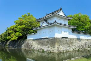 新緑の二条城 東南隅櫓の写真素材 [FYI04050607]