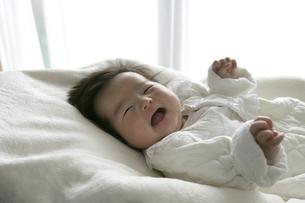日本人の赤ちゃんの写真素材 [FYI04050828]