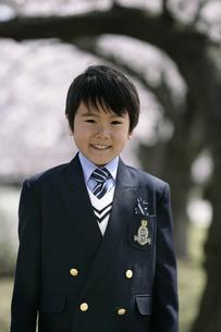 桜の木とスーツを着た男の子の写真素材 [FYI04050845]