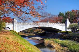 南浅川橋の紅葉の写真素材 [FYI04050931]