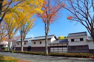 けやき並木と旧田中家住宅の写真素材 [FYI04050935]