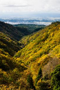 紅葉の山並みと横手盆地の写真素材 [FYI04051080]