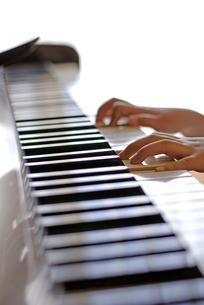 ピアノを弾く子どもの手の写真素材 [FYI04051091]
