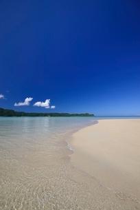 西表島の海の写真素材 [FYI04051466]
