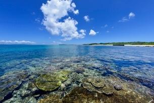 波照間島の海の写真素材 [FYI04051474]