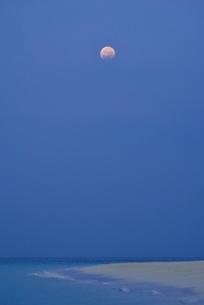 渚と月光の写真素材 [FYI04051484]